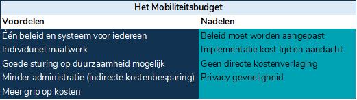 Voordelen nadelen mobiliteitsbudget